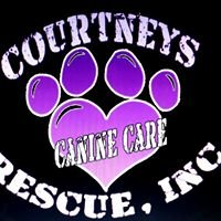Courtney's Canine Care Rescue Inc.