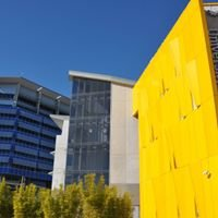 Occupational Therapy at Southern Cross University- Gold Coast