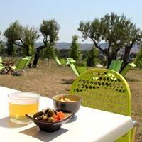 El Niu, la terrassa d'estiu