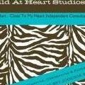 Wild At Heart Studios