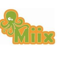 MIIX Juguetes & Accesorios