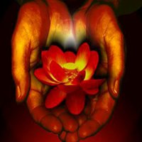 Touch of Reiki