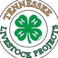 Tennessee 4-H Livestock Program