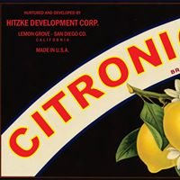 Citronica One