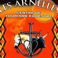 Camargue à cheval - Centre Équestre Les Arnelles