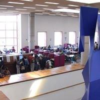 Sistema de Bibliotecas de la Facultad de Ingeniería UNAM