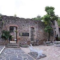 Cepe Taxco Unam