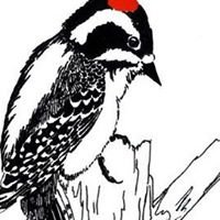 DuPage Birding Club