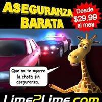Lime2lime