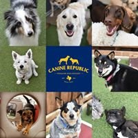 Canine Republic Dog Resort