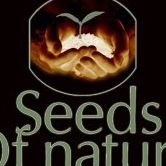 Seeds of Nature