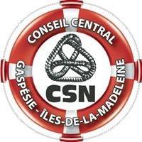 Conseil Central de la Gaspésie et des Îles de la Madeleine CSN