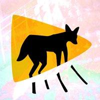 Lobo Fest: Festival Internacional de Filmes - Edição #10