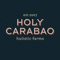 Holy Carabao