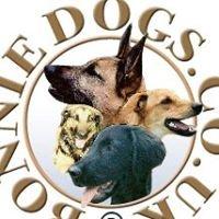Bonnie Dogs