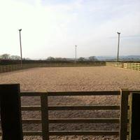 Rhos Farm Equestrian