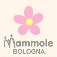 Le Mammole del Reparto Maternità Ospedale Maggiore Bologna