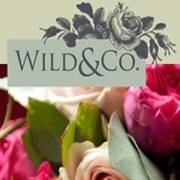 Wild & Co Flowers Ltd