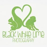 Black White Lime Photography