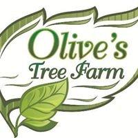 Olive's Tree Farm