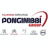 Gruppo Ponginibbi