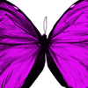 Butterflies Beauty & Holistic Therapy