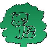 Cherub Tree