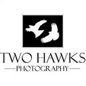 Two Hawks Photo