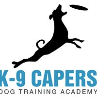 K-9 Capers Dog Training Academy