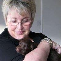 Waltham Rambles. Dog Care Professionals