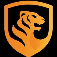 Tiger Computers & Security Ltd