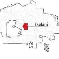 Tselani/Cottonwood Hane'