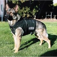 NC Vest-a-dog1 Official
