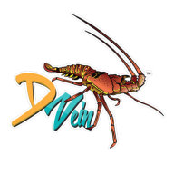 D Vein Company