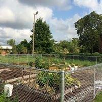 South End Urban Garden