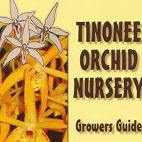Tinonee Orchid Nursery