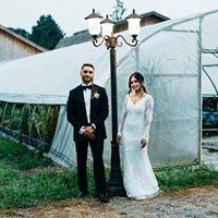 Mehdi Nowroozi Wedding Photography + Videography