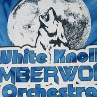 White Knoll High School Orchestra Booster Club