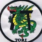 TORI Karate