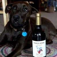 Parker-Binns Vineyard and Winery