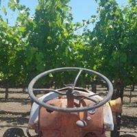 Taddei Vineyards