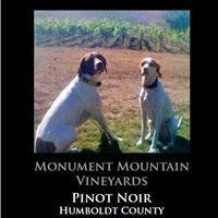 Monument Mountain Vineyards (MMV)