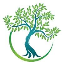 Midori Organic Landscaping