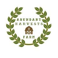 Abundant Harvests