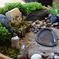 Mini Fairy Gardens