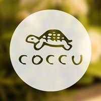 Coccu