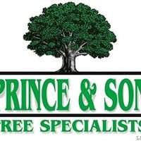 Prince & Son Tree Specialists