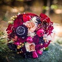 Black Iris Floral Design