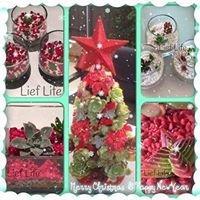 Lief Life