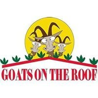 Goats On The Roof Of The Smokies